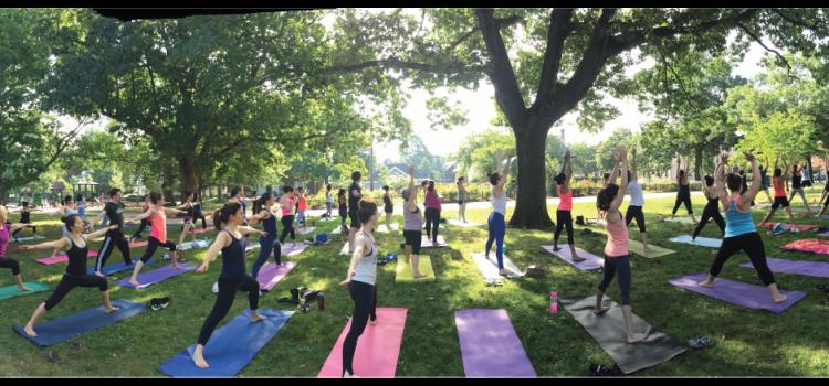 <strong>Oriente al Parco – Lezioni open nel verde: </strong><br/> 15 settembre 2019 Settala